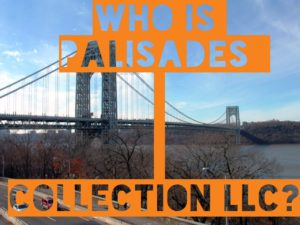 Who is Palisades Collection